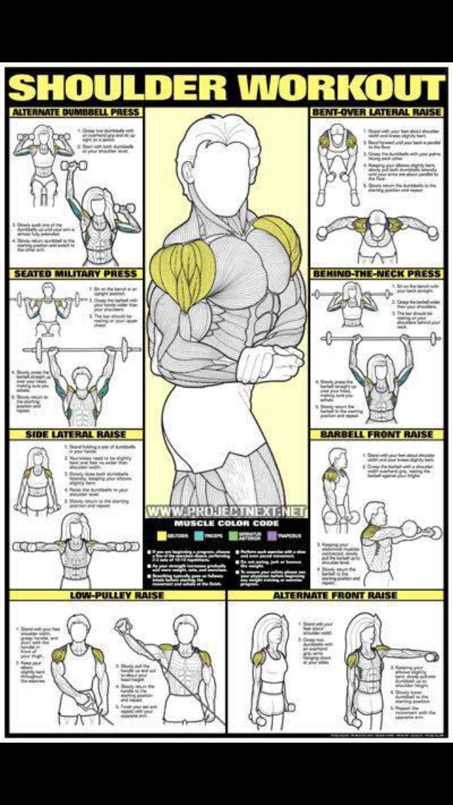 Pin by J@v!3R 3ch3v3rr!@ on Gym | Pinterest | Workout ...