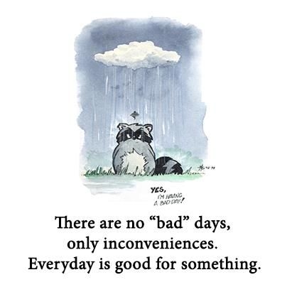 There Are No Bad Days Only Inconveniences Everyday Is Good For Something