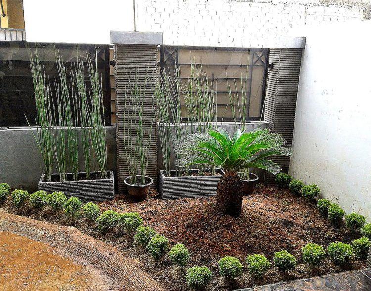 Taman Depan Rumah Minimalis Lahan Sempit Taman Pinterest