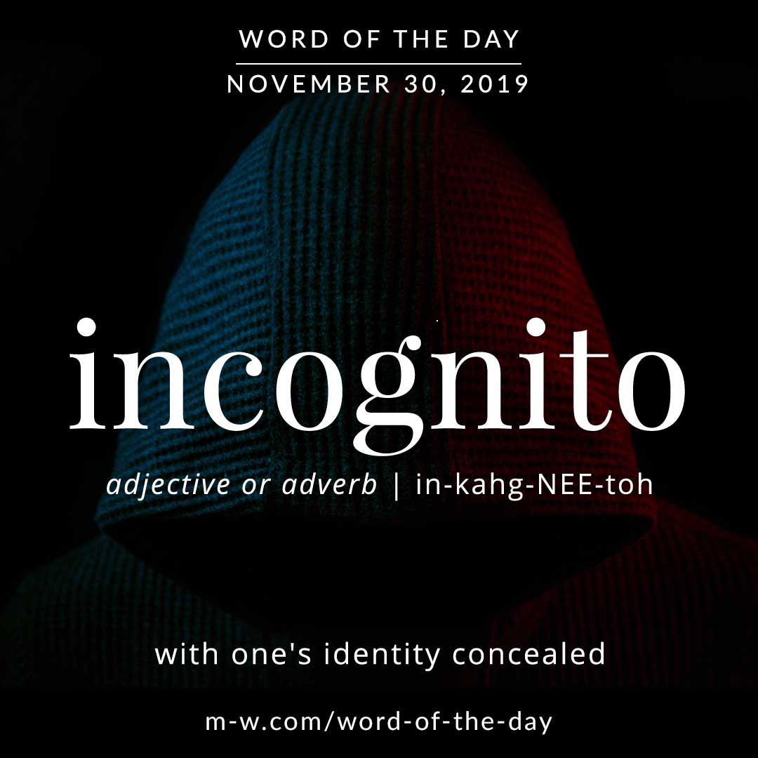 Word Of The Day Incognito Word Of The Day Words Uncommon Words