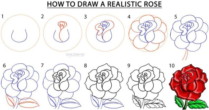 How to Draw a Rose | All information About How to draw a Rose Step by Step for Kids/ Beginners ...