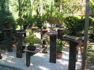 bonsai gardens. Bonsai Garden Gardens