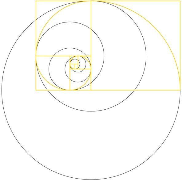 News making art with the golden ratio golden ratio for Golden ratio artwork