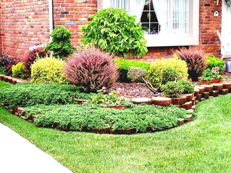 Image Of Small Front Yard Tiny Landscaping Ideas No Grass ...