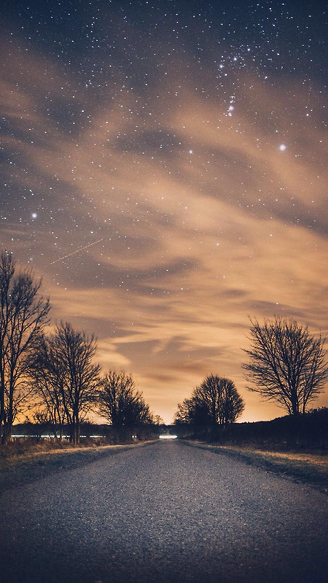 Nature Night Shiny Road Endless Tree Roadside iPhone 6 wallpaper  iPhone 6~8 Wallpapers