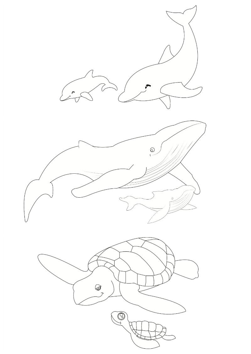 Sea Animals Shoebox Puppet Theatre Be A Fun Mum Animal Coloring Pages Whale Crafts Dolphin Images
