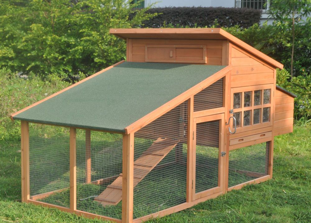 rabbit size balmoral elements this apart gives which open run is doors tall s the features plenty new protection its hutches of popular most hutch one from covered