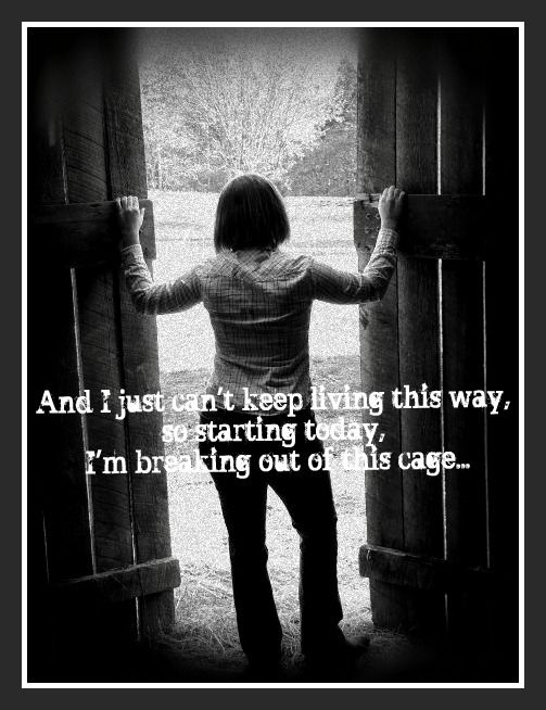 Lyrics From Eminem S Not Afraid And One Of My Senior Pictures