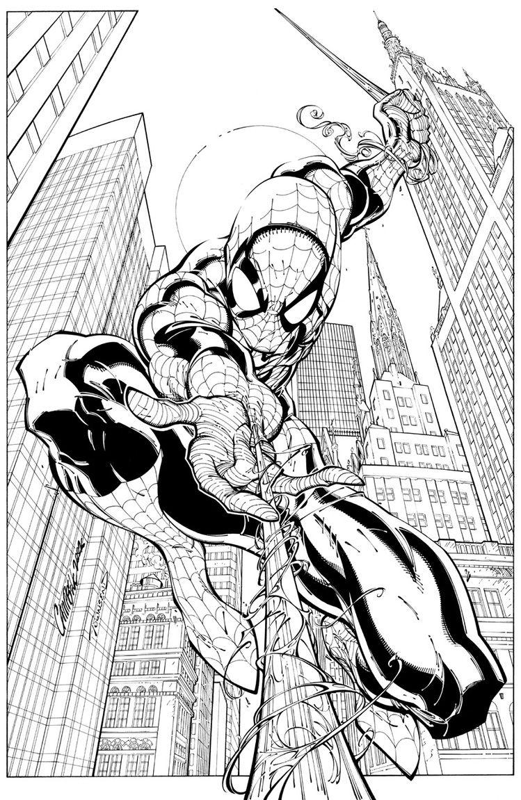 - Spider-man J. Scott Campbell Spiderman Coloring, Spiderman Art