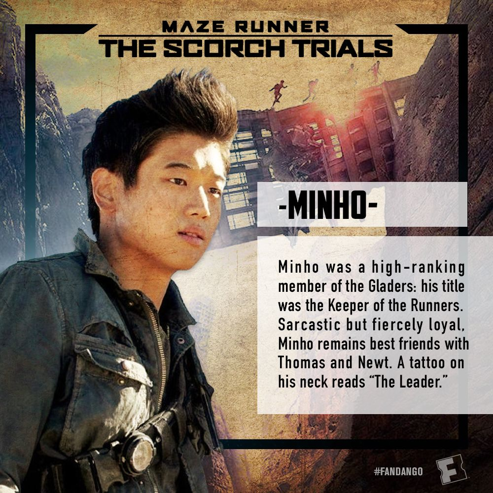 Maze Runner The Scorch Trials  amazoncom