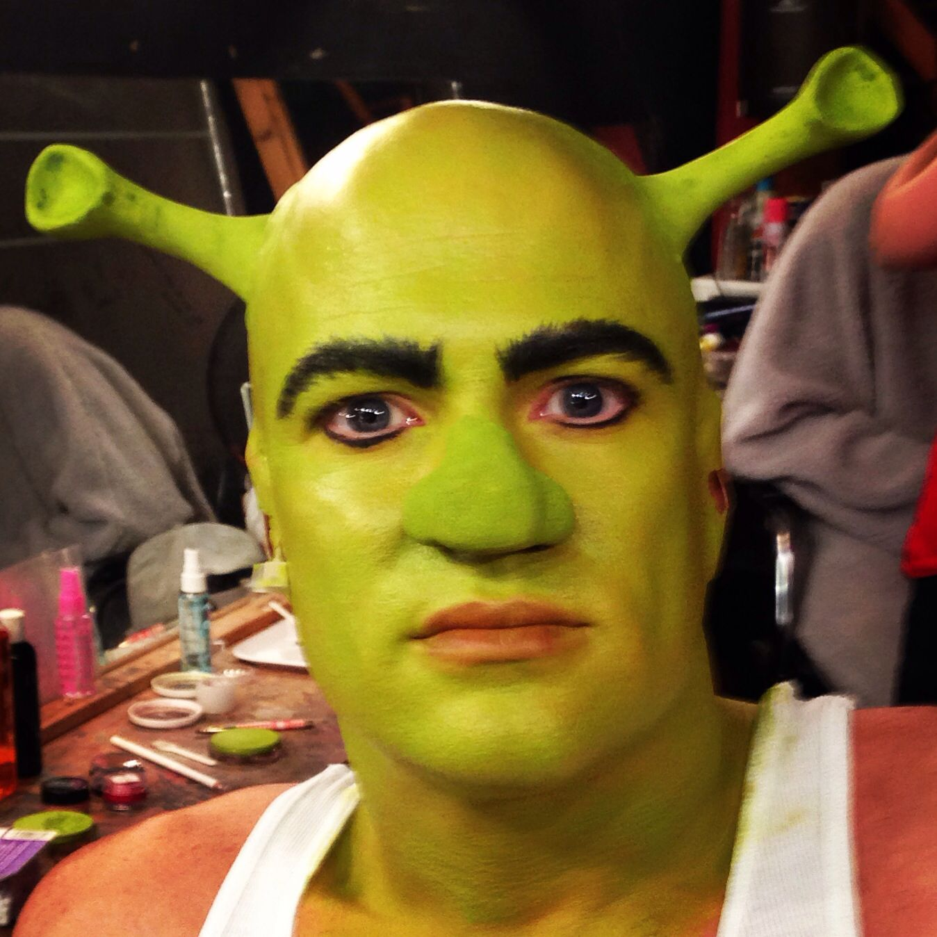 Shrek makeup | Fasnet in 2018 | Pinterest | Kostüm, Shrek kostüm und ...