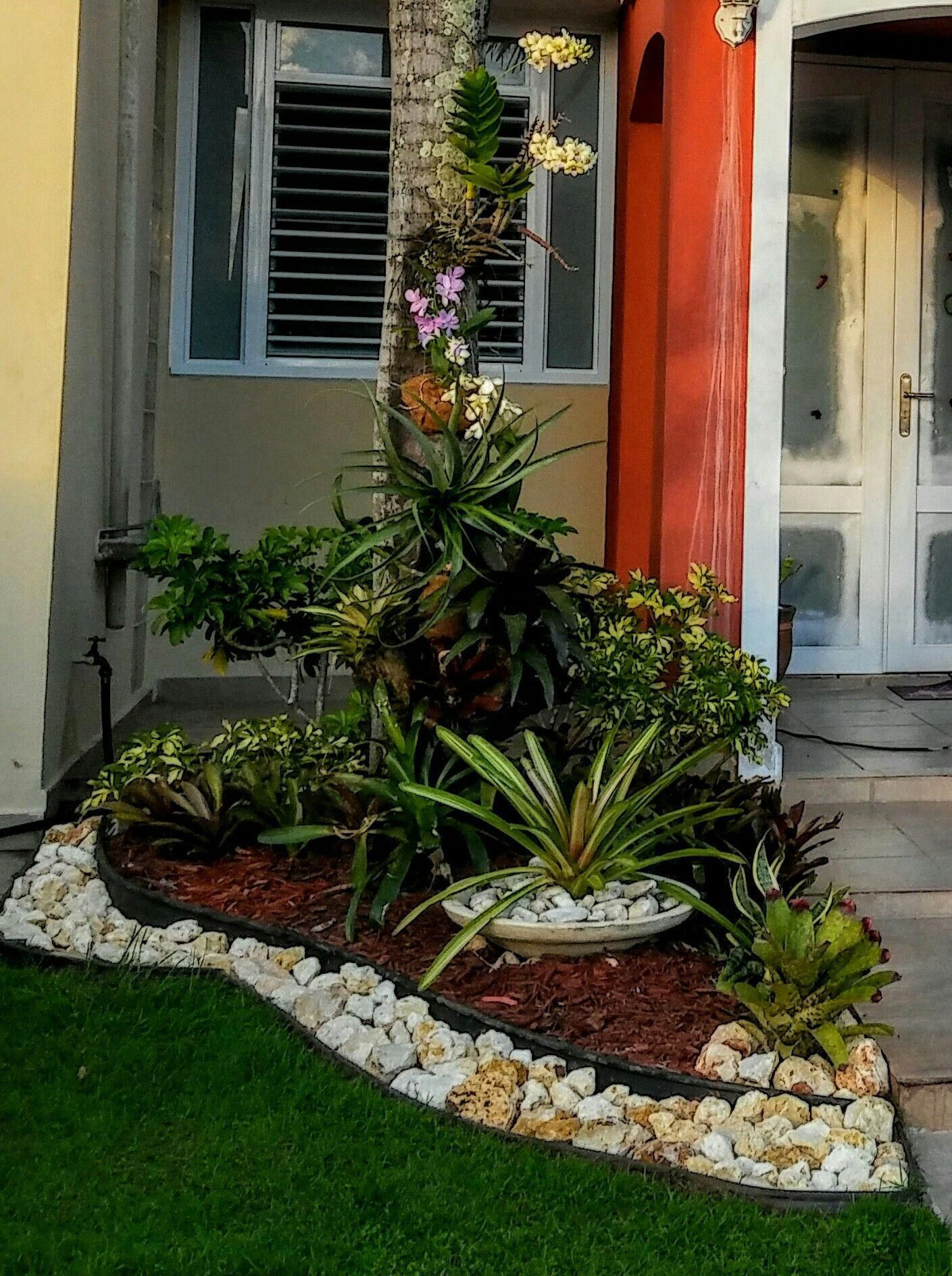 landscape tips #landscapegardenideasforsmallgardens ... on Tropical Small Backyard Ideas id=20823