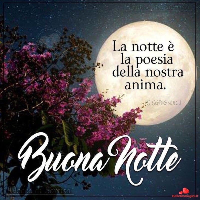 Buonanotte Buona Notte Immagini Per Whatsapp Da Scaricare