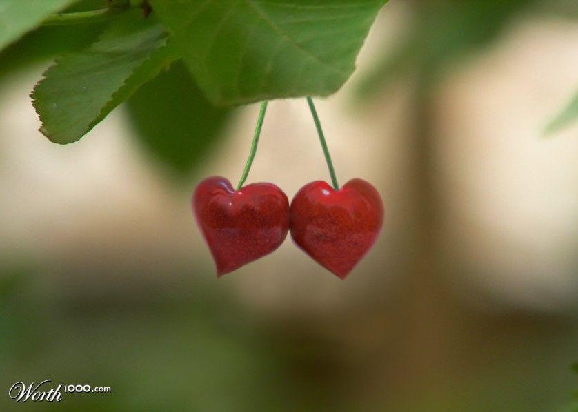 Cherry Love - Worth1000 Contests