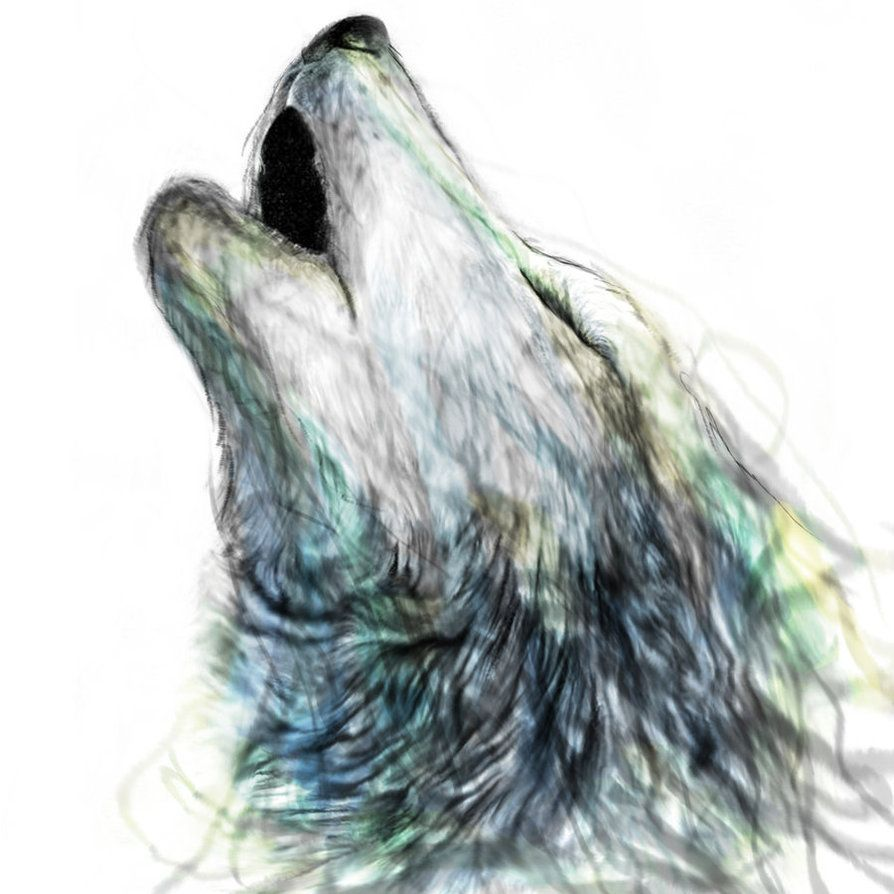 Wolf Howling Tumblr DrawingWolf Howling Tumblr