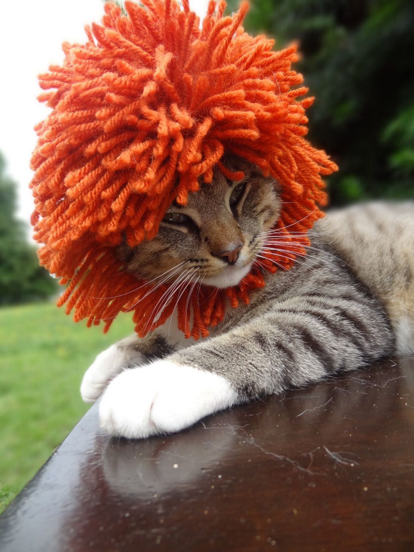 Lion Mane Cat Dog Hat   FULL MANE The Lion by iheartneedlework, $26.00