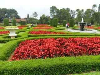 Villa Murah Di Lembang Dekat Tempat Wisata Dan Rekreasi Sewa Villa Lembang Villa Istana Bunga Bandung Taman Bunga Begonia