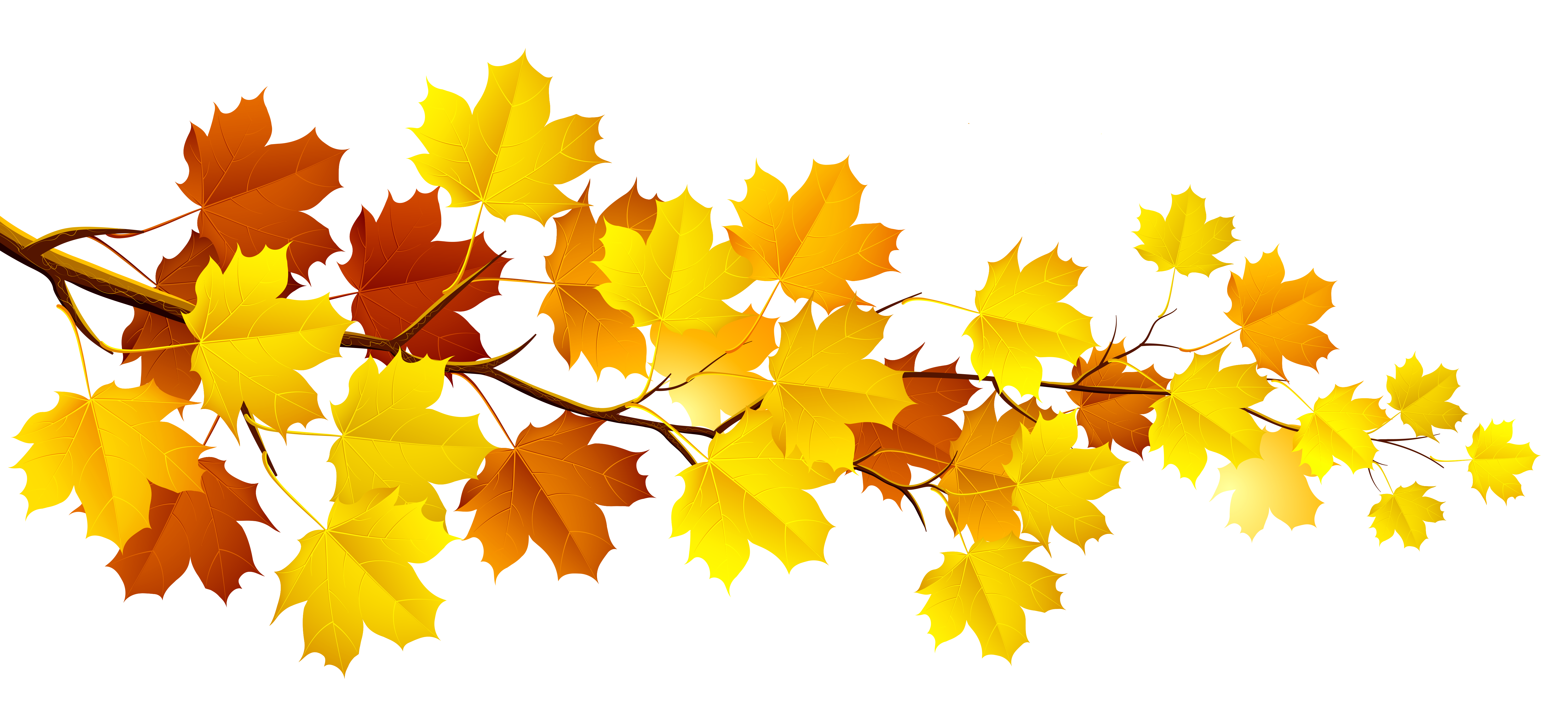 fall leaves clipart free clipart images 3 clipartcow clipartix [ 5999 x 2681 Pixel ]