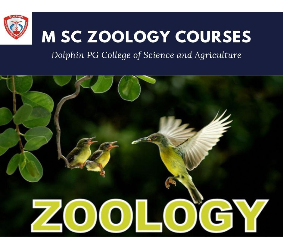 Zoology is the branch of biology which relates to the