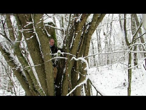 Doar natura la sfarsit de februarie