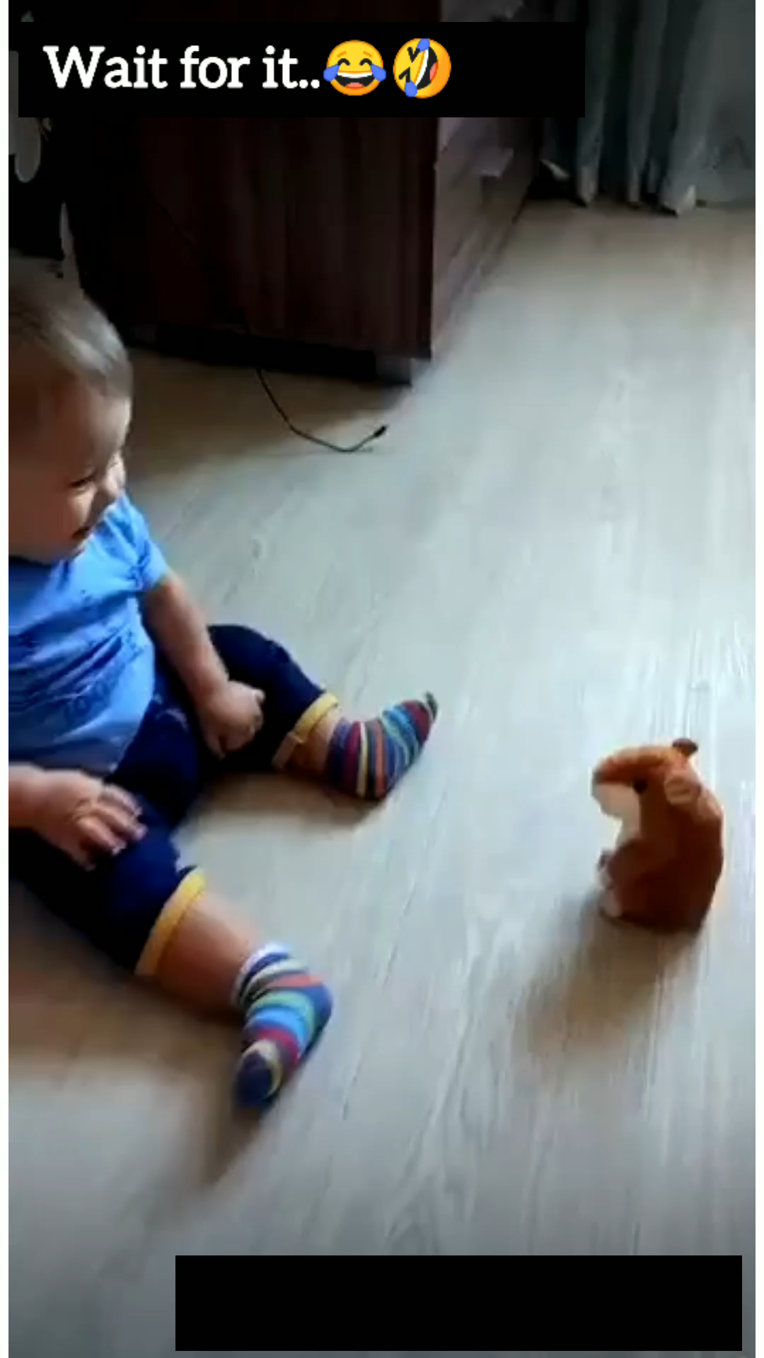 Funny Baby Fails Try Not To Laugh Fun Comedy Funny Baby Photos Cute Funny Baby Videos Funny Baby Jokes