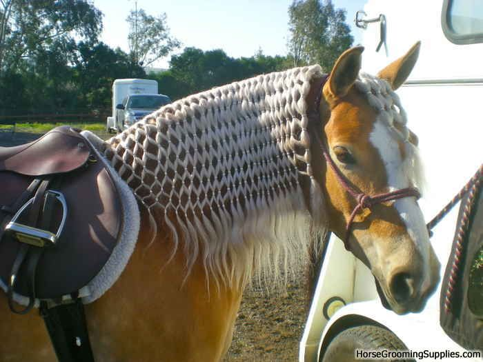 Fishnet Horse dressage Braid | 4-H & Show Prep ...