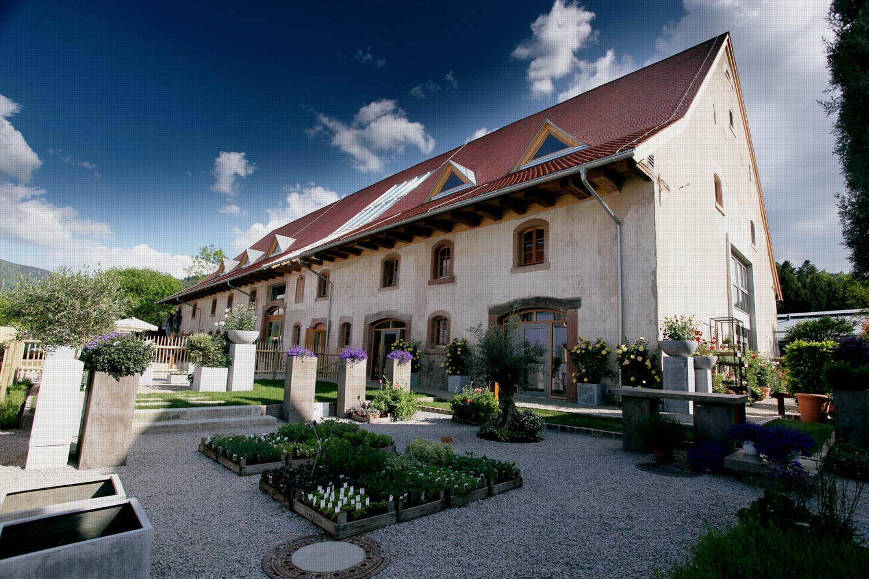 Rainhof Scheune Hochzeit Bauernhof Hof