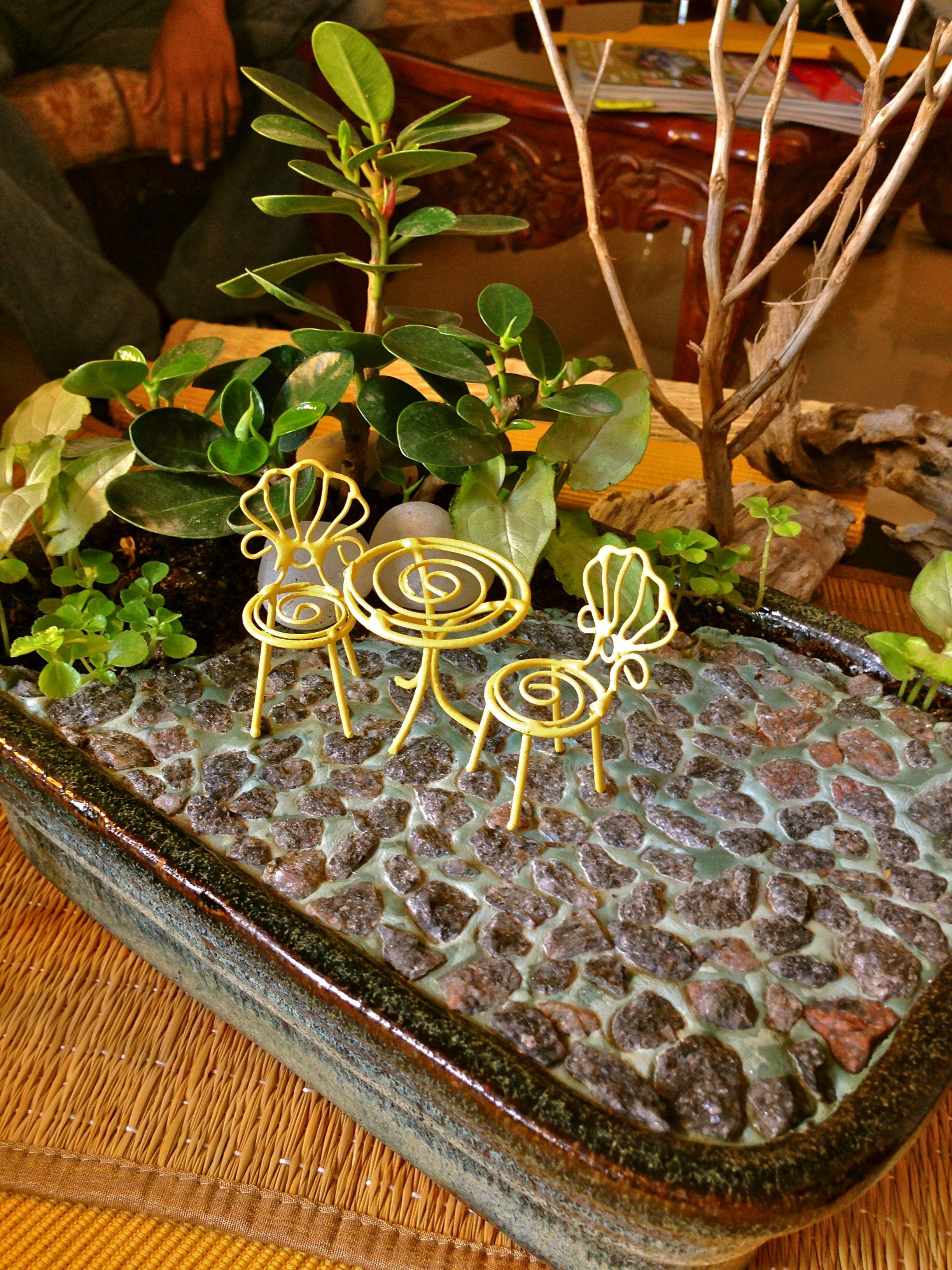 e of our Miniature Gardens from the Secret Garden Collection