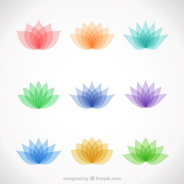 Variedade de flores coloridas de lótus | Reiki ~ Yoga ~ Prana ...