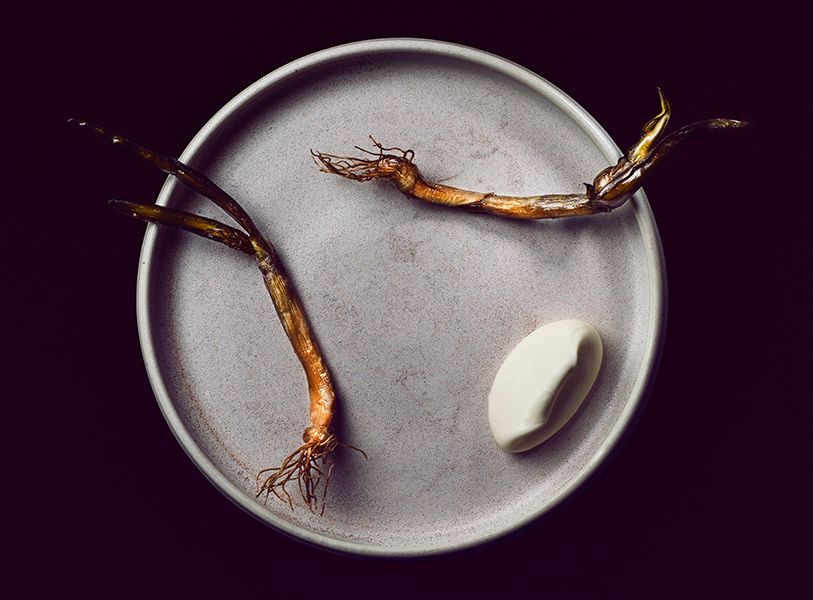 Galleries – The Art of Plating The first garlic of the year by chef Esben Holmboe Bang.