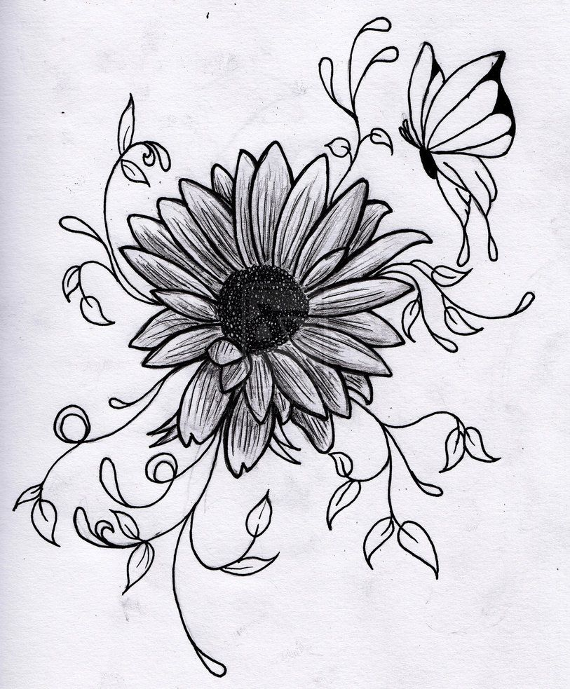 Flower Sketches, Beautiful