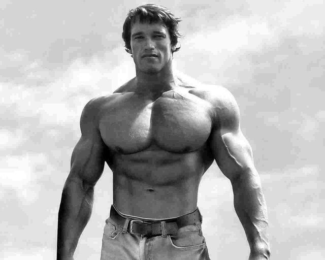 Arnold Schwarzenegger Think BIG!! Pinterest Arnold - new arnold blueprint ebook