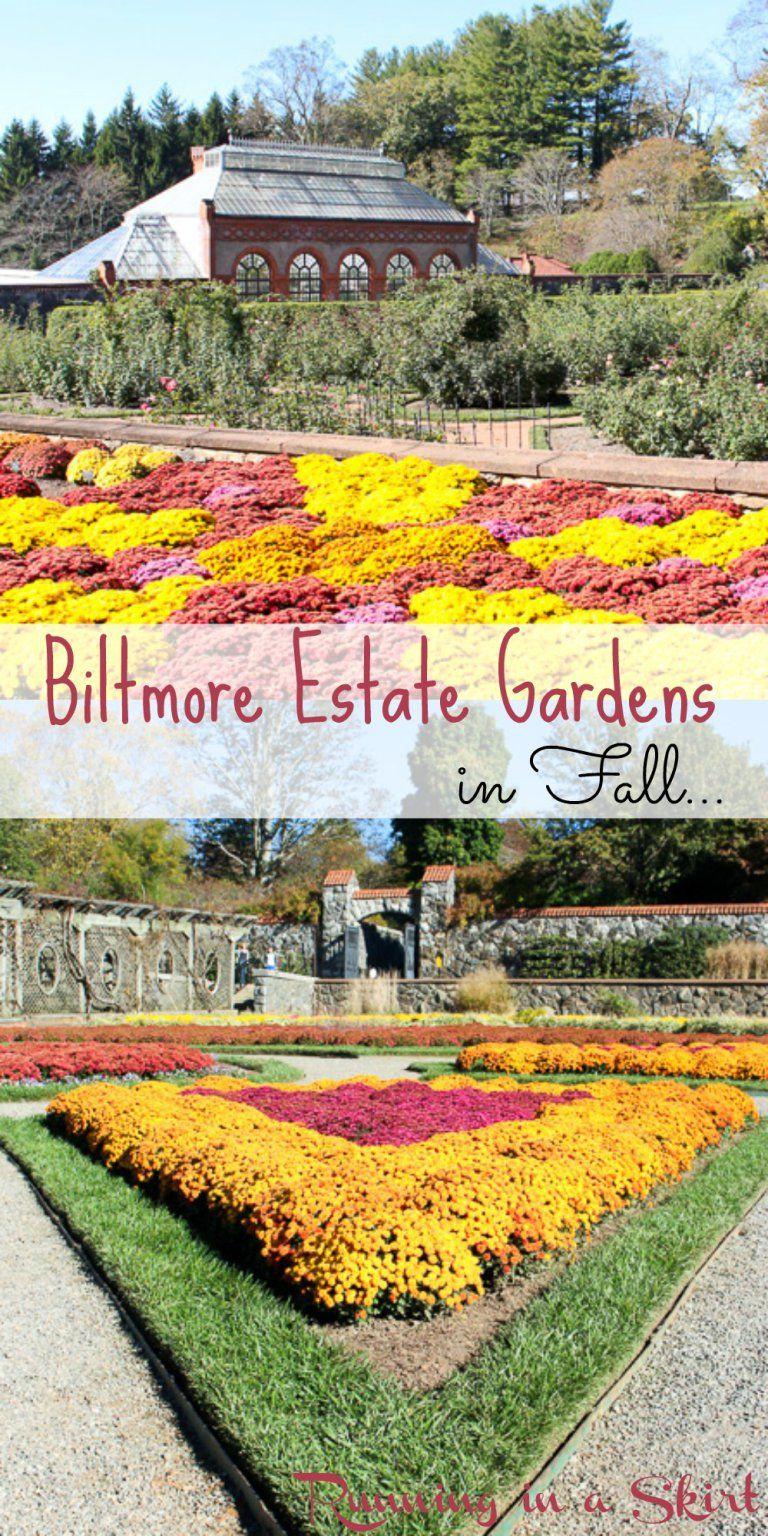 a71002b24d103052e124cf6b27034617 - Best Time To Visit Biltmore Gardens