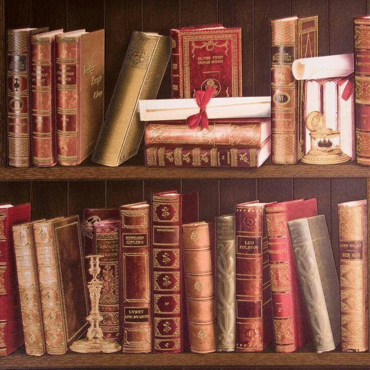 правильно картинка книги на полках для стен найдете уникальные заросли