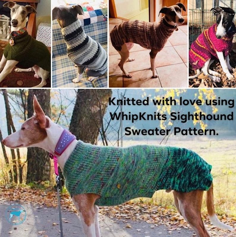Photo of Dog Sweater Knitting Pattern PDF Instant Download Great for | Etsy | knitting pa…