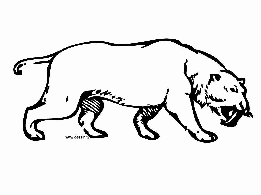 Saber Tooth Tiger Coloring Page Inspirational Coloring Saber Toothed Tiger Coloring Pages Sabertooth Dragon Coloring Page