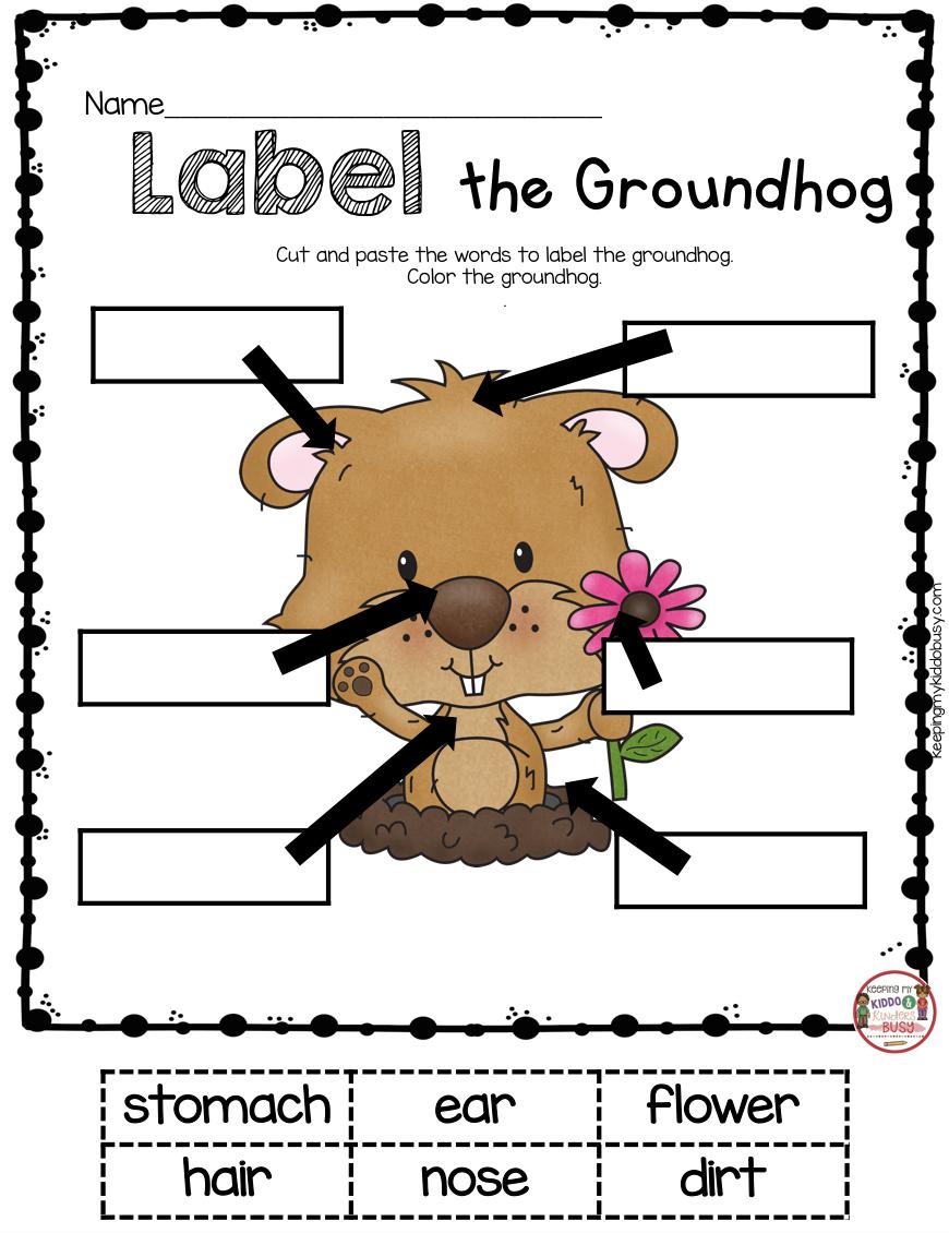 February Math Ela Pack Freebies Keeping My Kiddo Busy Kindergarten Groundhog Day Kindergarten Groundhog Preschool Groundhog [ 1130 x 870 Pixel ]
