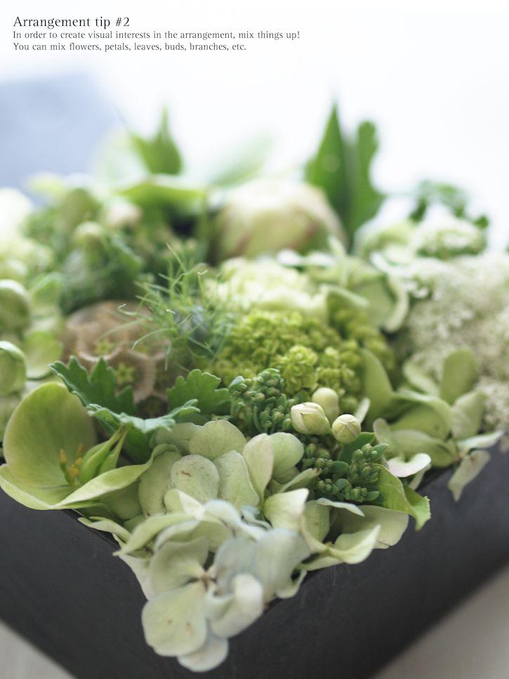 Baum-Kuchen - A gift of fresh green