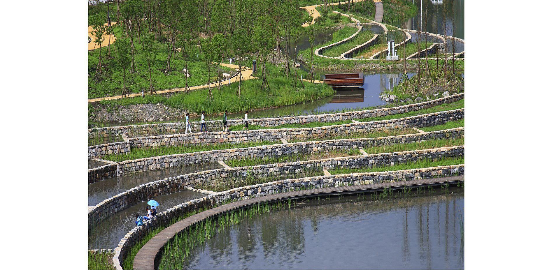 2014 Asla Professional Awards Wetland Park Urban Landscape Landscape