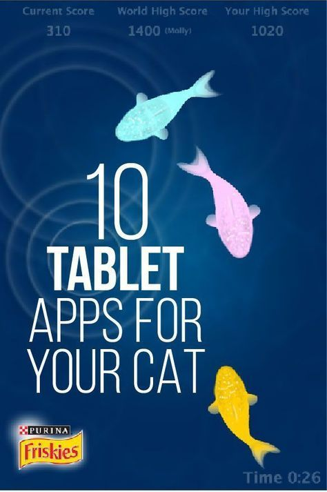 10 Tablet Apps for your Cat Cats, Crazy cats, Cat toys