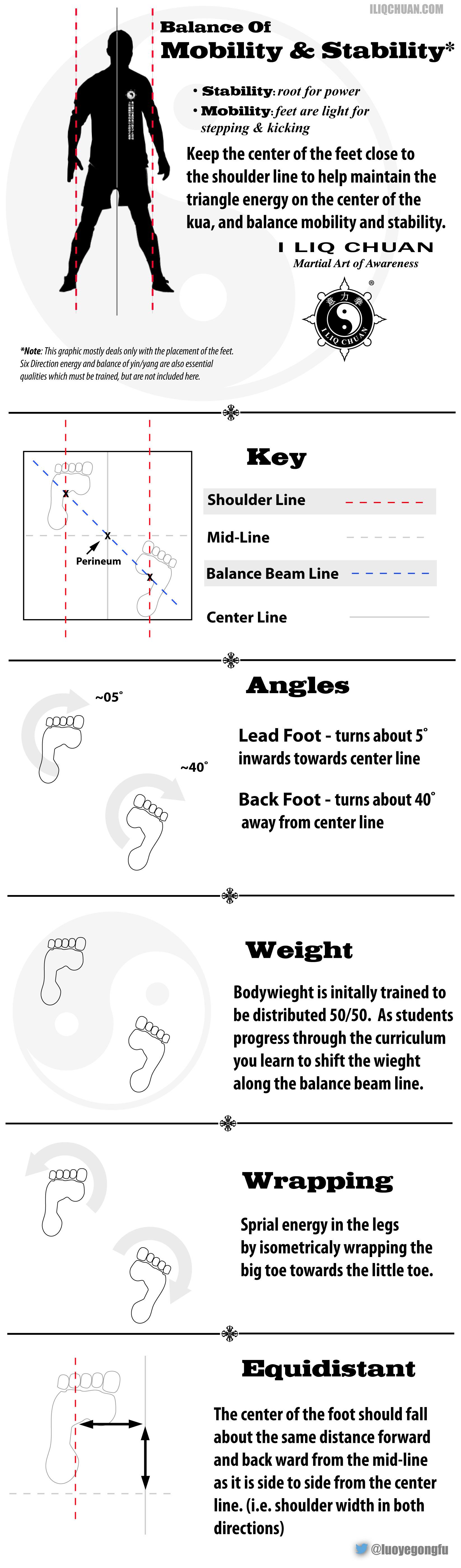 I liq Chuan Stance - Infographic | martial art_ I liq chuan ...