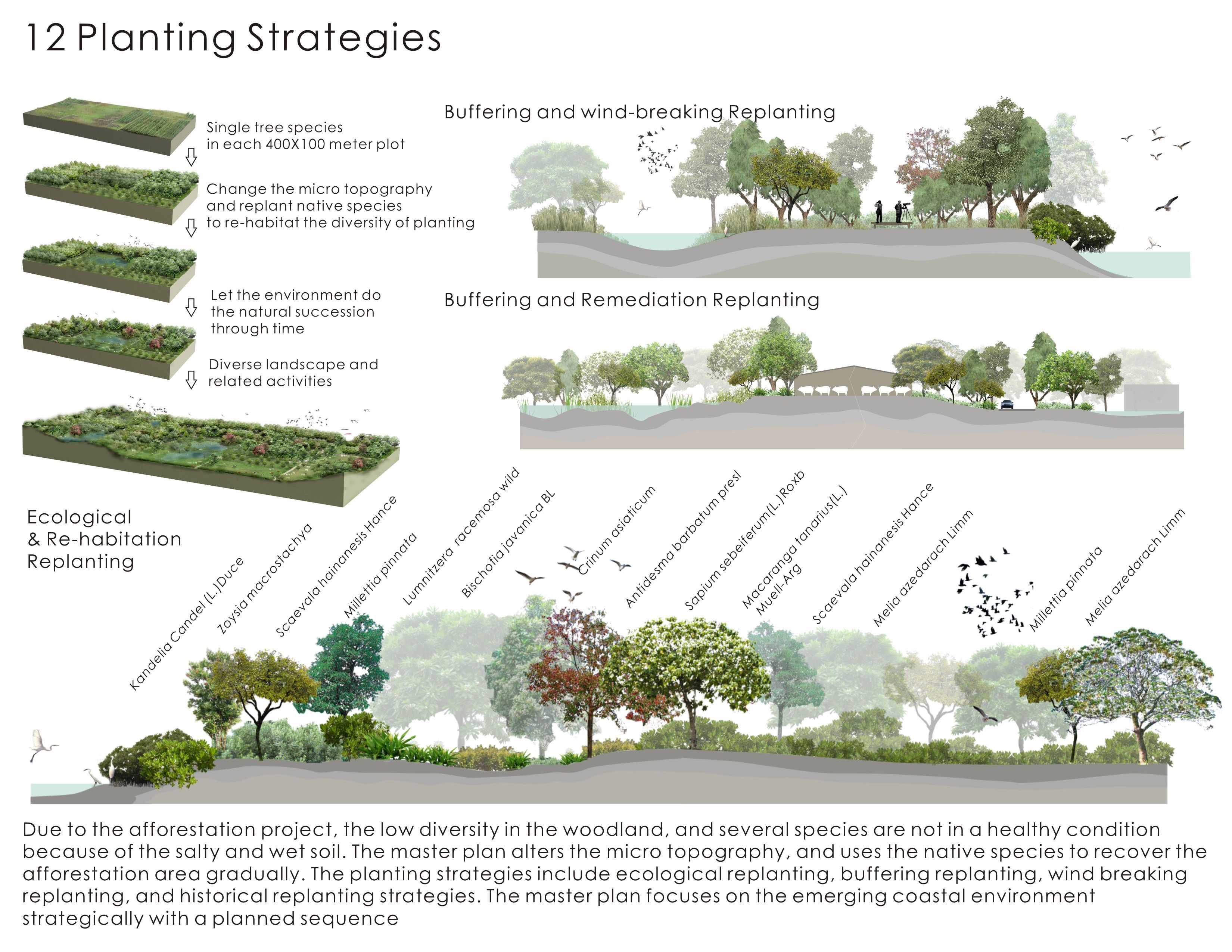 hight resolution of planting strategies