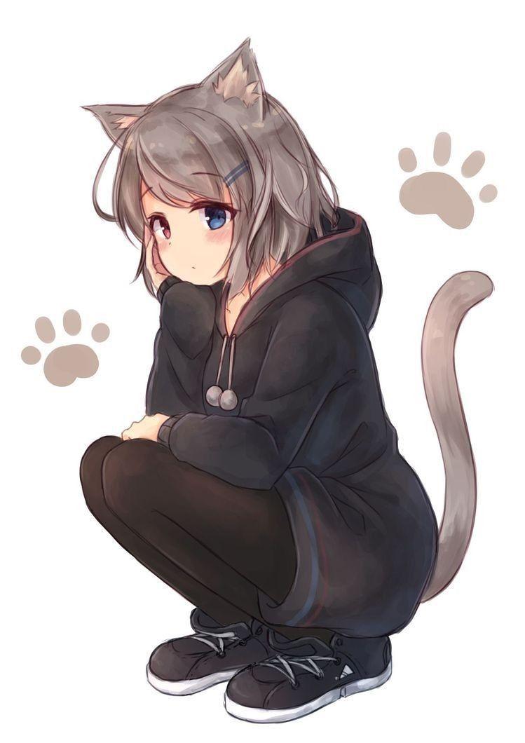 Аниме картинки котики девушки