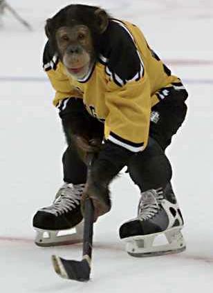 Cool Hockey Pics Bing Images Hockey Pictures Ice Hockey Hockey