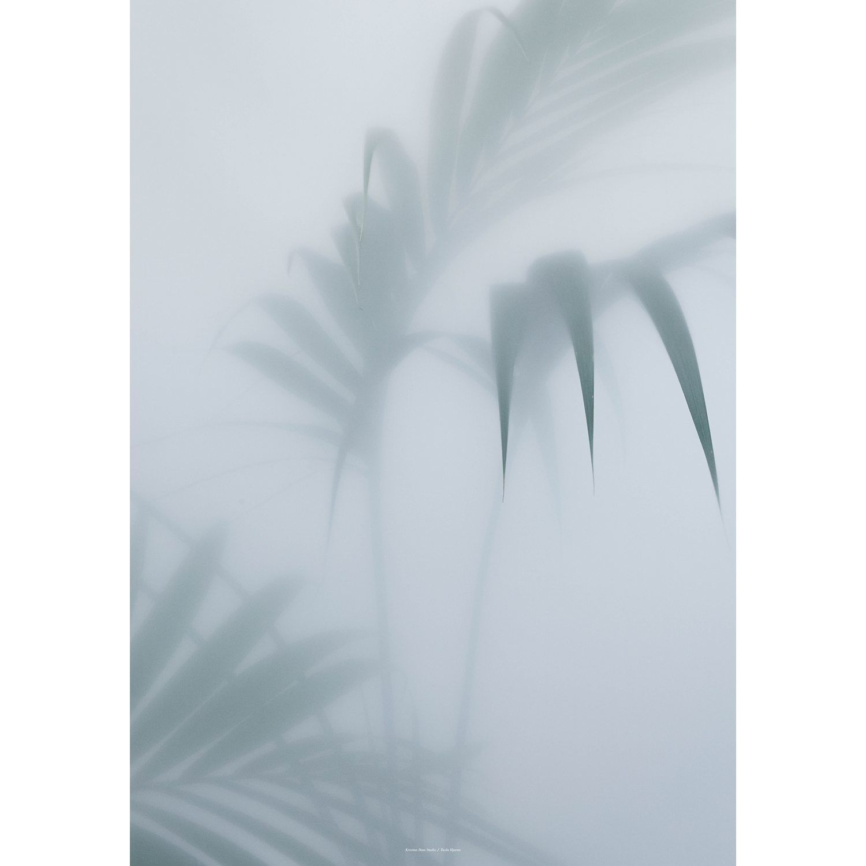 Palm I juliste, 70x100 cm – Kristina Dam – Osta kalusteita verkossa osoitteessa ROOM21.fi