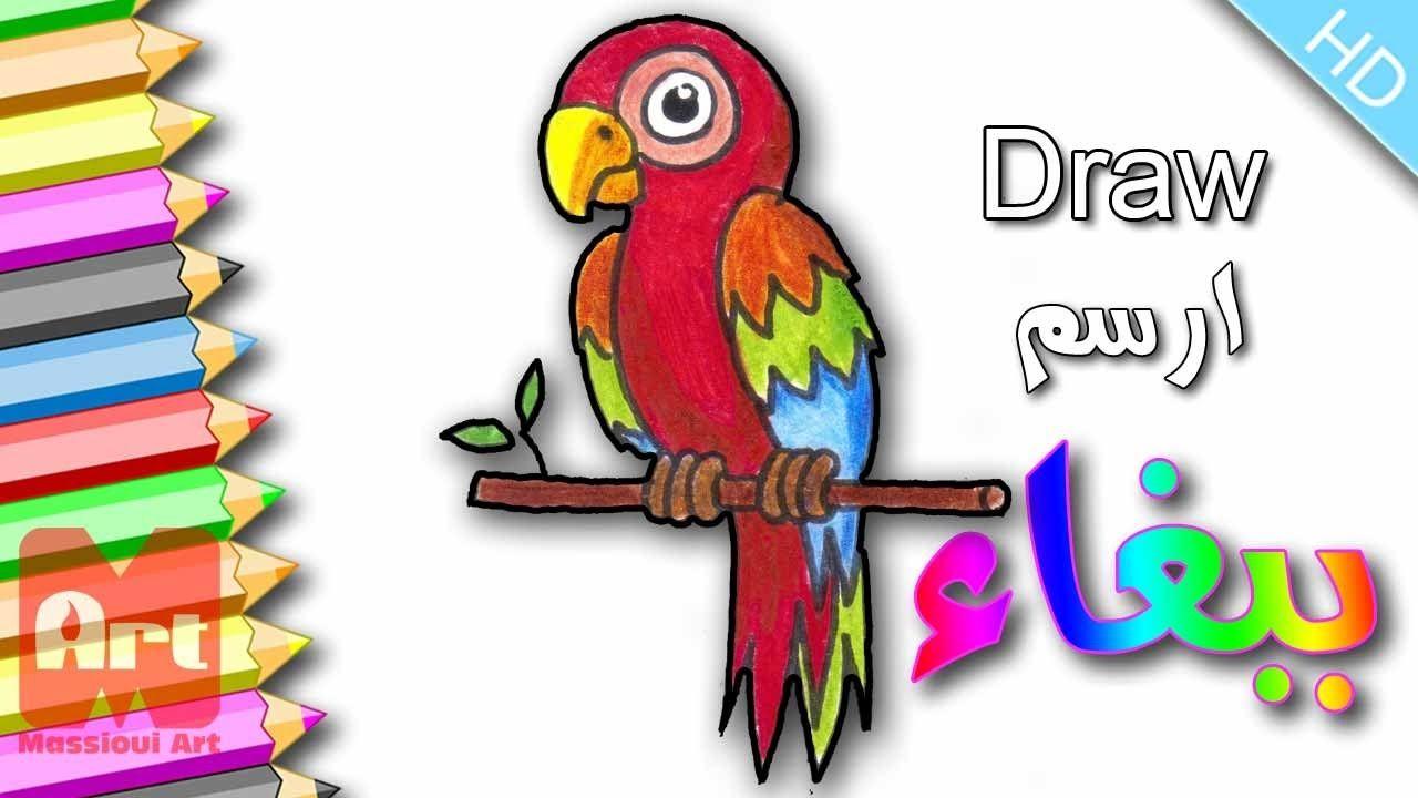 Comment dessiner un perroquet etape par etape - Dessiner un perroquet ...
