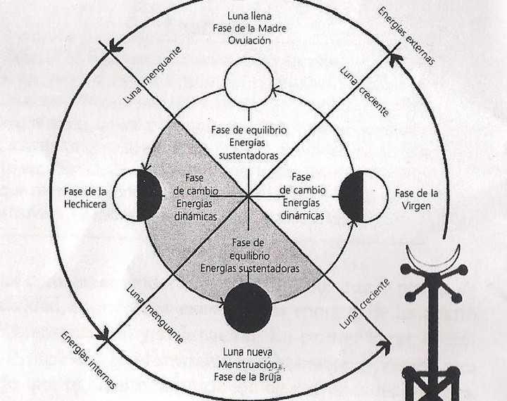 Según Miranda Gray Las 4 Fases Del Ciclo Menstrual Y Cómo
