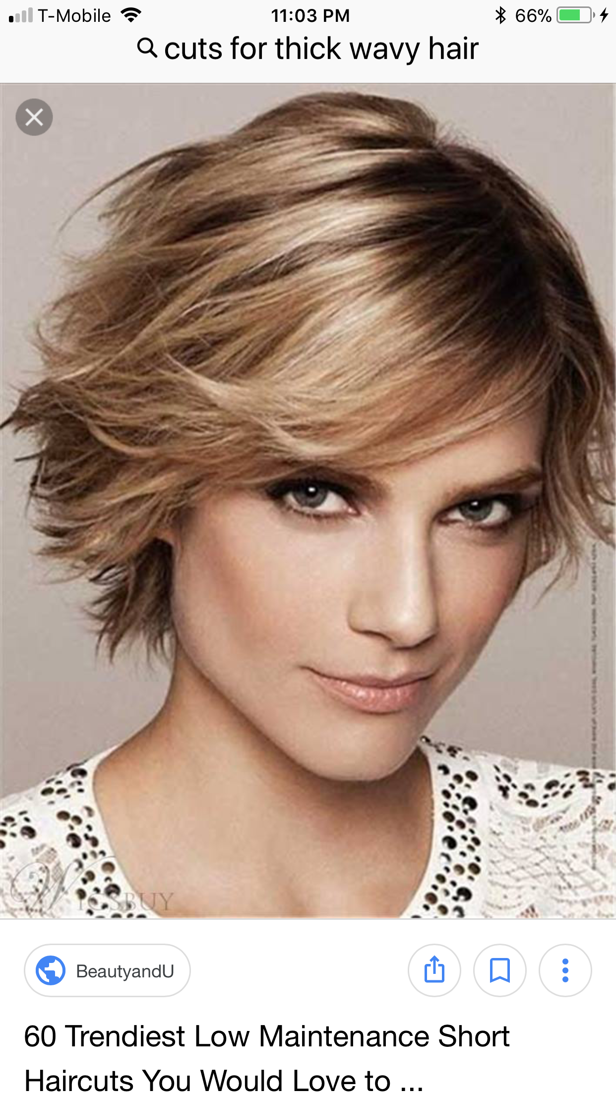Pin By Tina Roy On Hair And Nails Cute Hairstyles For In 2020 Thick Hair Styles Short Hair Styles Easy Low Maintenance Short Haircut