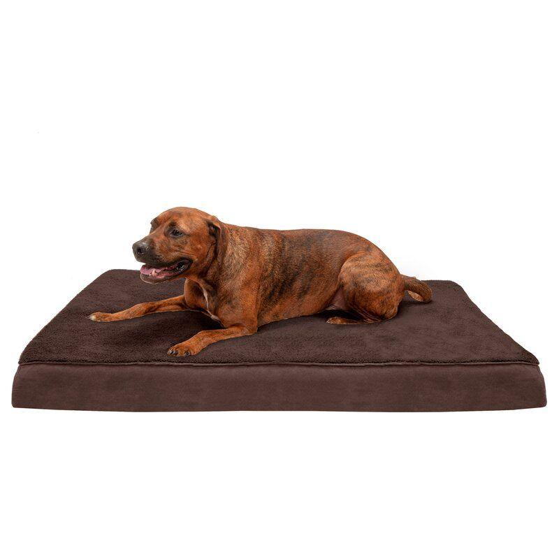 Billy Cooling Gel Top Orthopedic Pet Mat Orthopedic Pet Bed Dog Bed Large Orthopedic Dog Bed