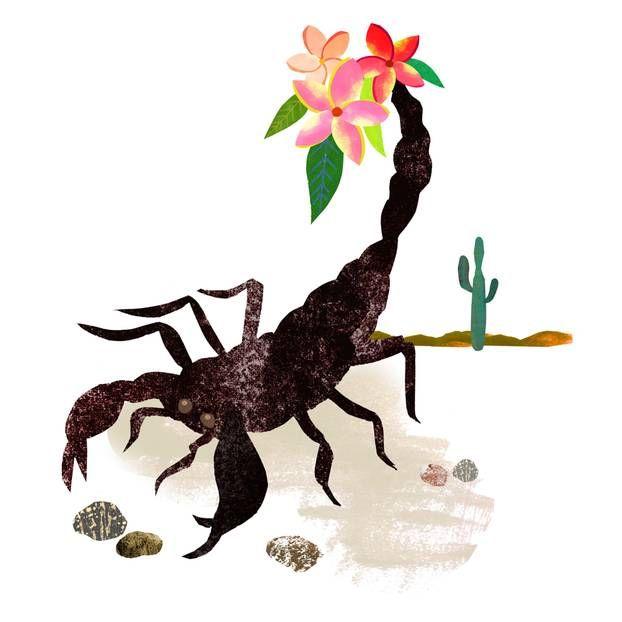 Singlehoroskop skorpion frau 2020